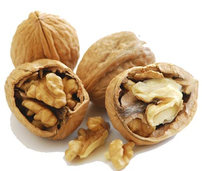 Walnuts - The main ingredient in Capsicum and Walnut Pistou